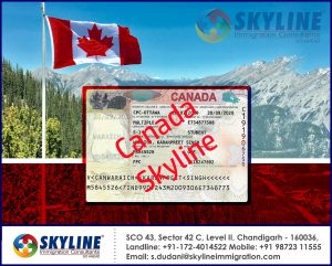 Canada study visa best consultants Chandigarh