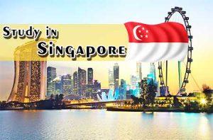 singapore student visa process