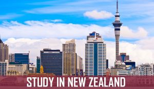 new zealand student visa checklist