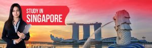 documents needed for singapore study visa