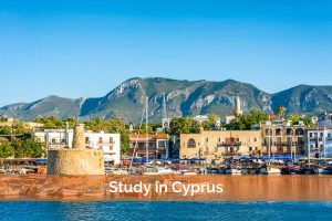 Larnaca College List Of Courses