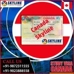 canada study visa requirements
