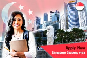 Requirements to Study in Singapore